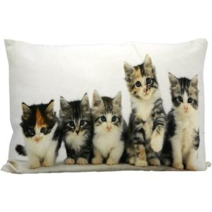 p 1 3 9 1 1391 Coussin chats 50x35cm MarsMore - Promotions