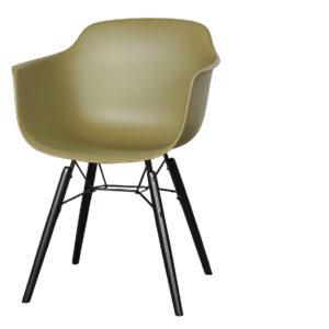 chaise-roosevelt-vert-300x300